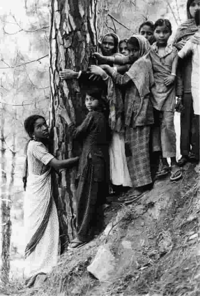 गौरा देवी चिपको आंदोलन