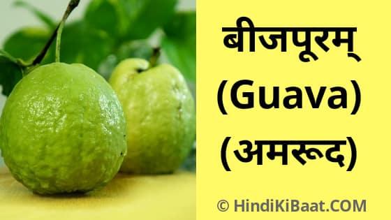 Guava in Sanskrit. अमरूद का संस्कृत में नाम