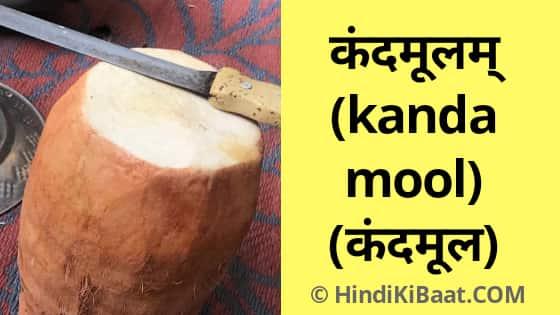 Kandamool in Sanskrit. कंदमूल का संस्कृत में नाम