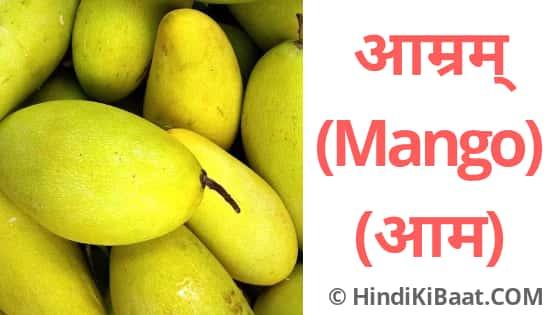 mango in Sanskrit. आम का संस्कृत नाम