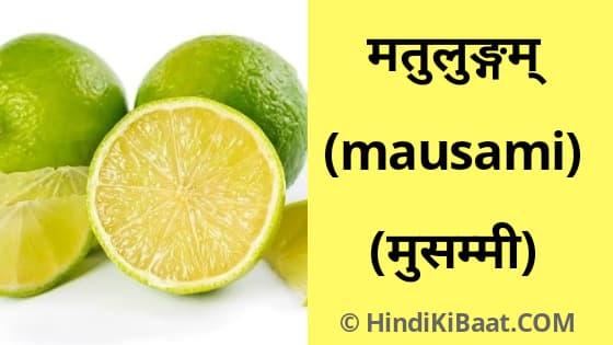 Mausami in Sanskrit. मुस्समी का संस्कृत में नाम