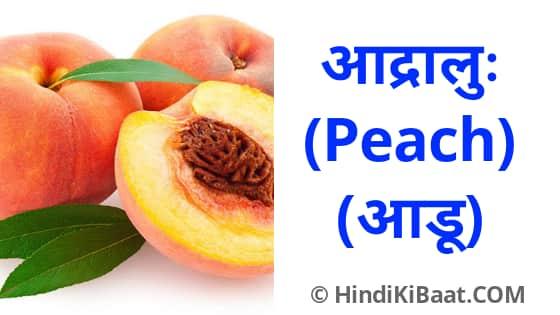 Peach in Sanskrit. आड़ू का संस्कृत में नाम