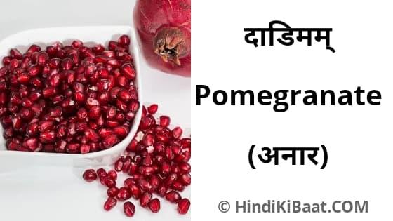 Pomegranate in Sanskrit. अनार का संस्कृत में नाम