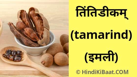 Tamarind in Sanskrit. इमली का संस्कृत में नाम