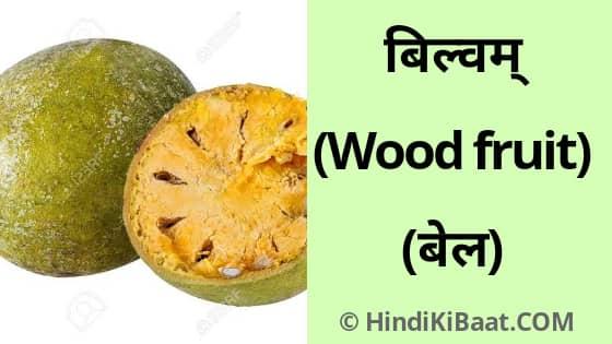 Wood Fruit in Sanskrit. बेल का संस्कृत में नाम