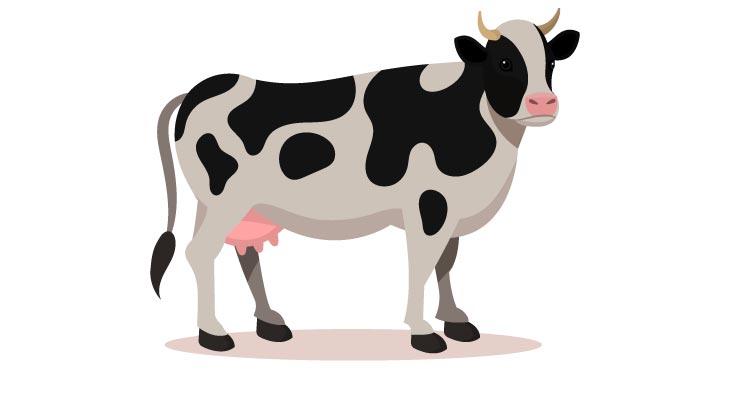 कक्षा 1 के लिए गाय पर निबंध. Essay on cow for class 1 in Hindi